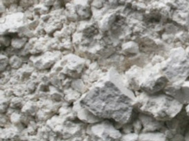 Organic Diatomaceous Earth Powder