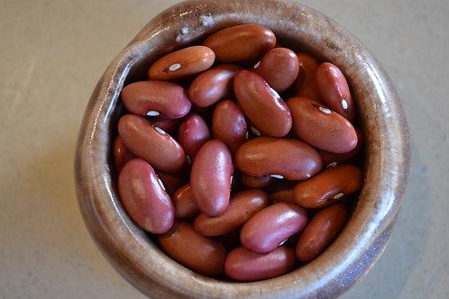 Junin dry bush bean