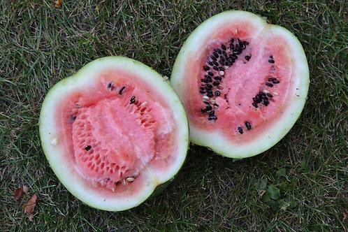 Cekirdegi Oyali watermelon