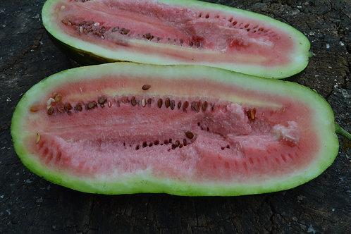 Art Combe's Ancient watermelon