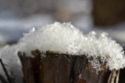Snow crystals up close