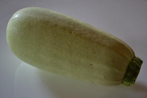 Lungo Bianco zucchini (summer squash)