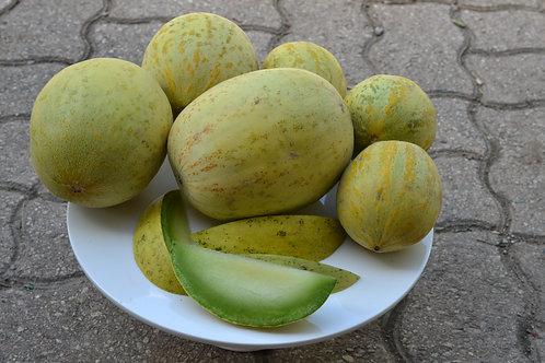 Cershownski melon