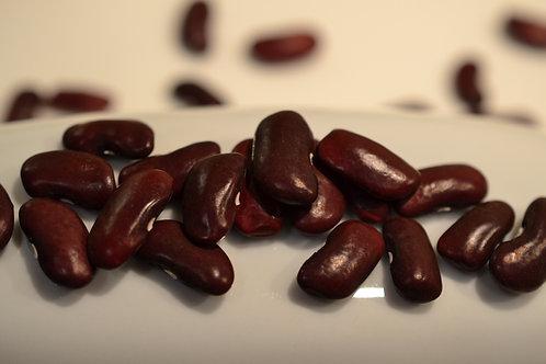 Wanda dry bush bean