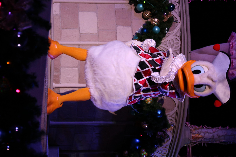 Jester Donald