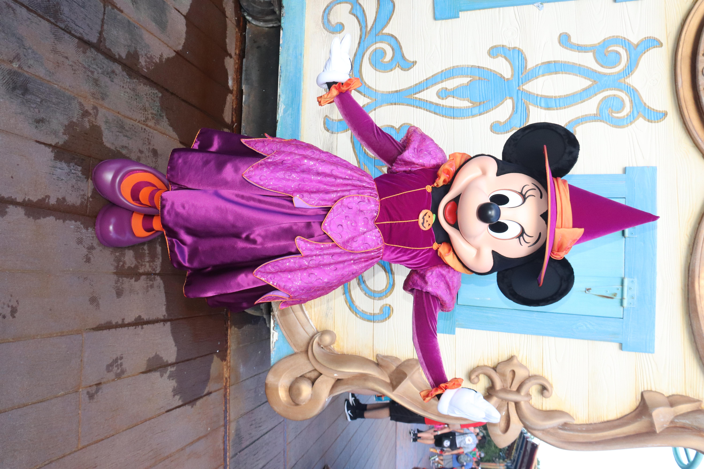 Meet Minnie