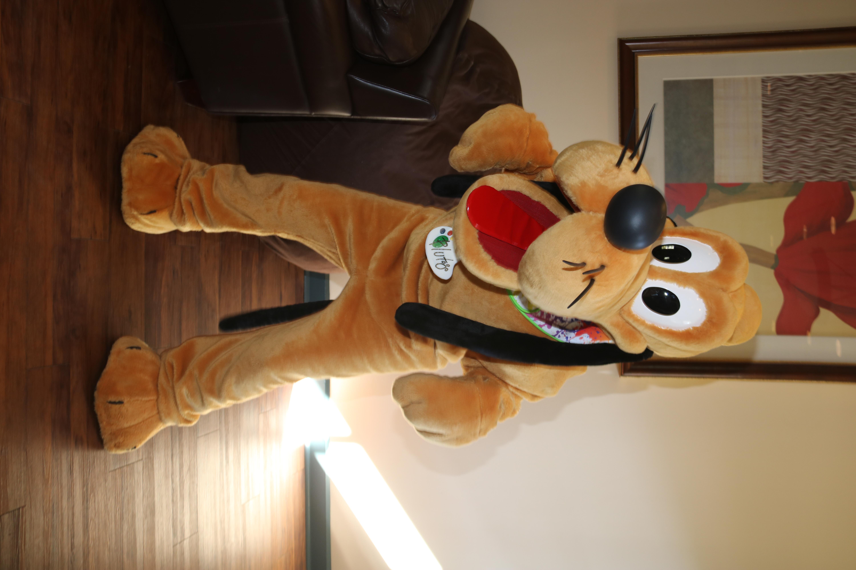 Art Pluto