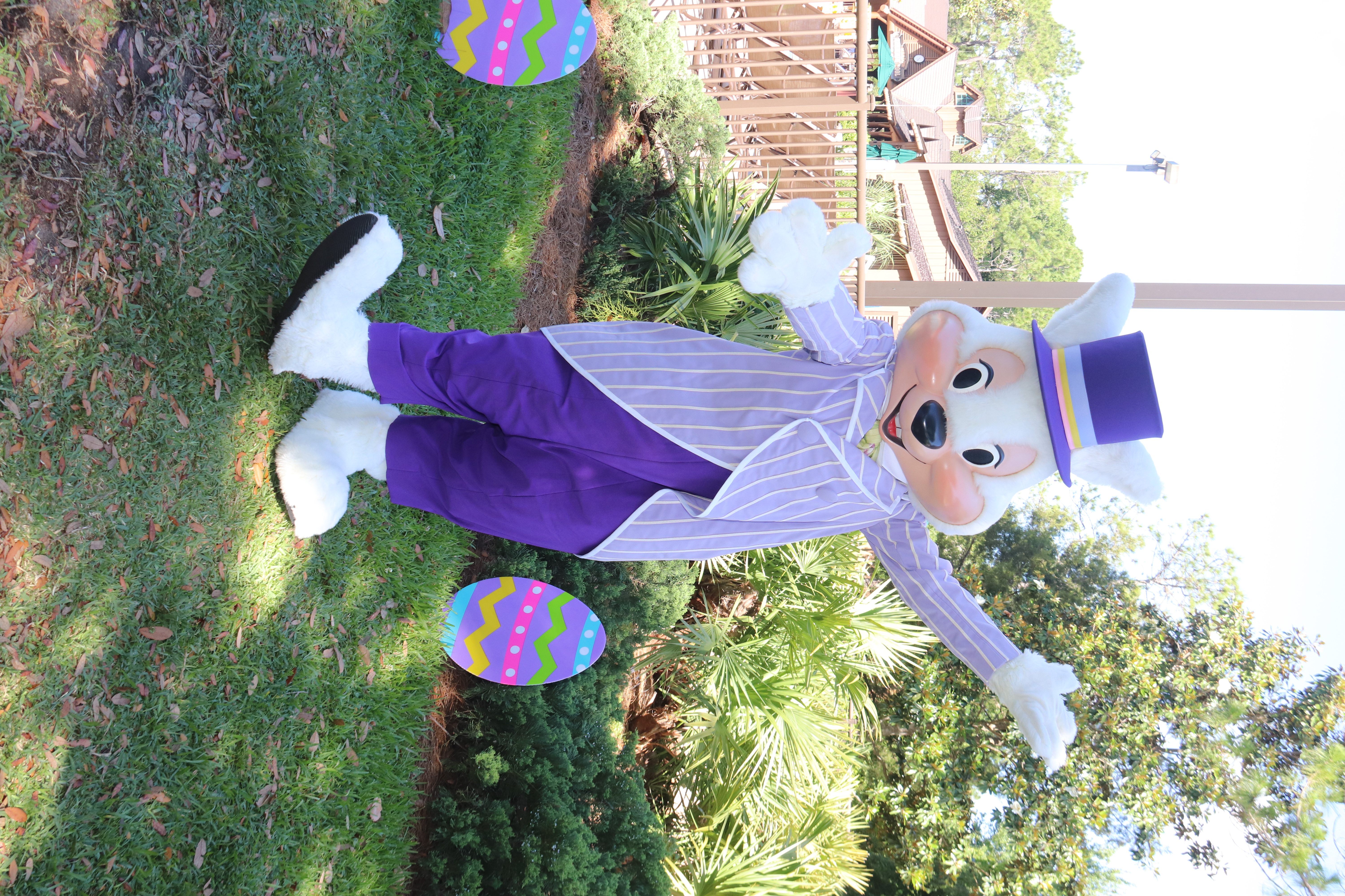Mr. Easter Bunny