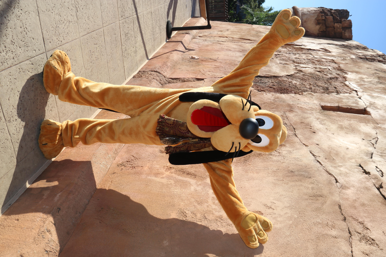 WDW Pluto
