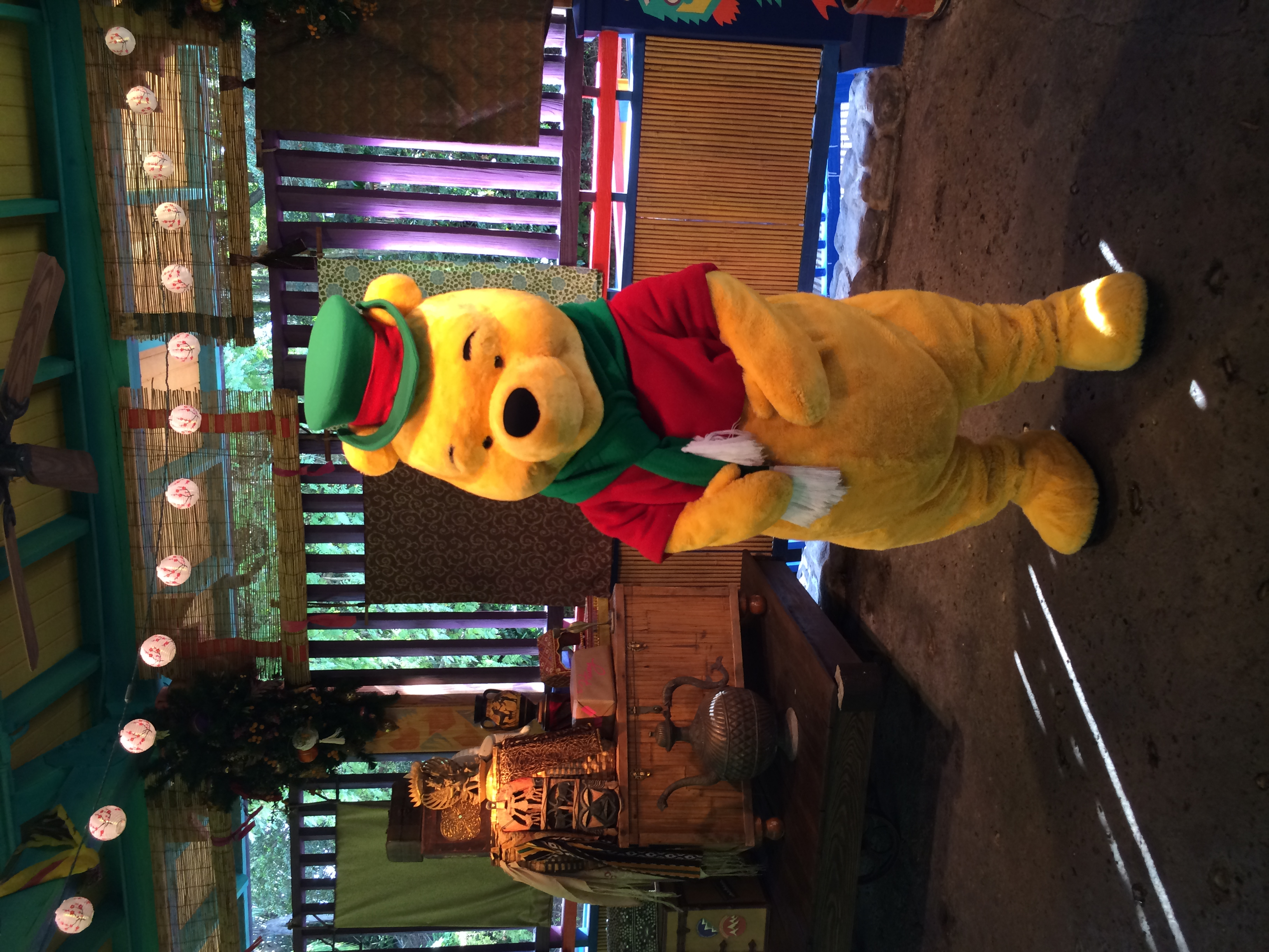 Animal Kingdom Pooh