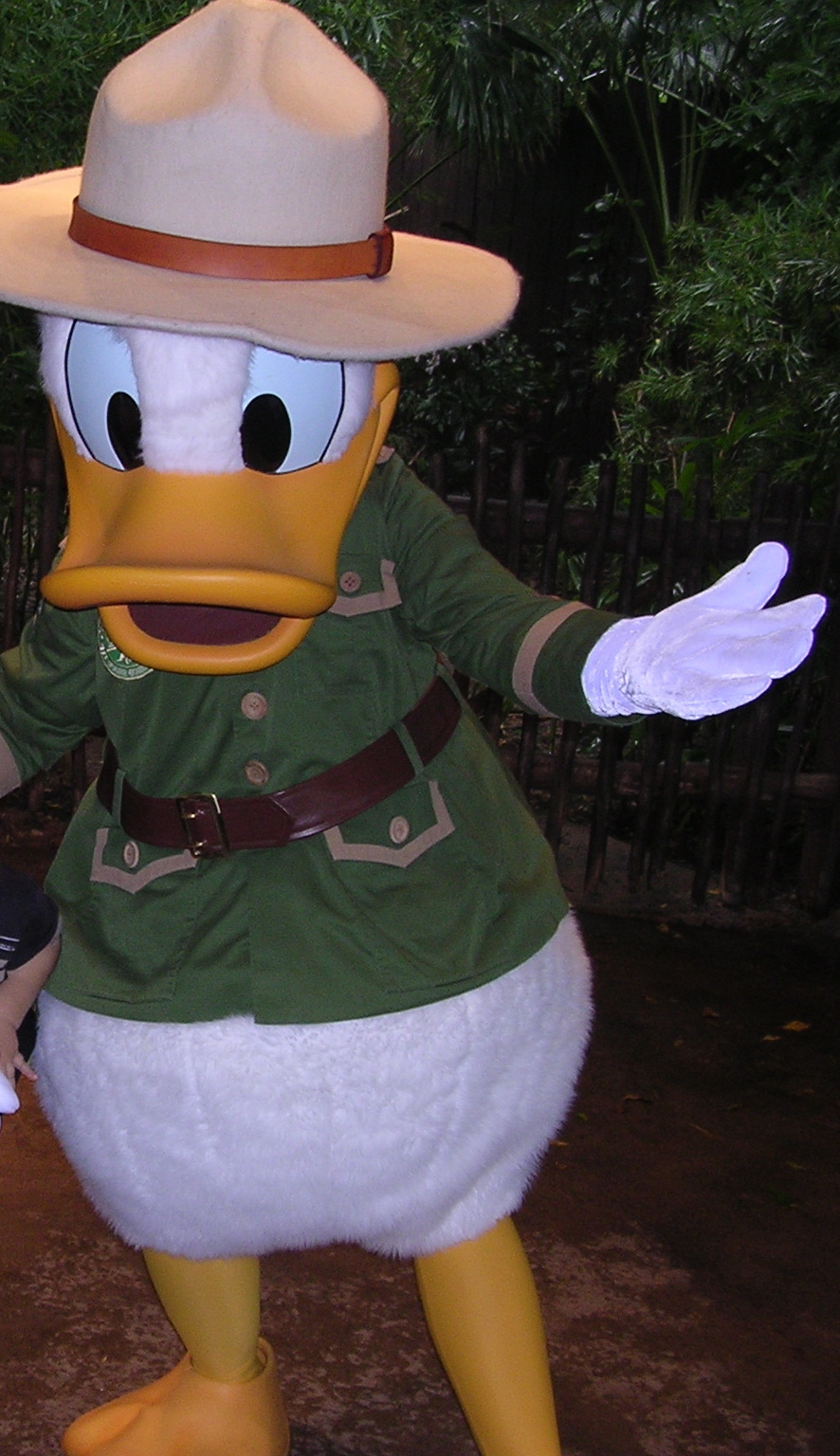 Old Donald Duck
