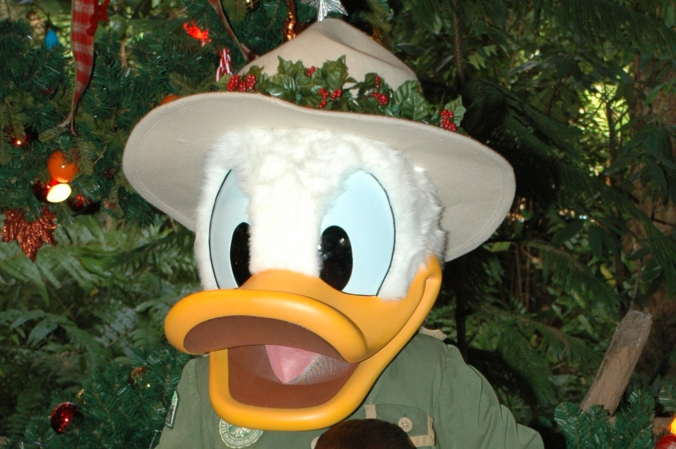Old Donald 2