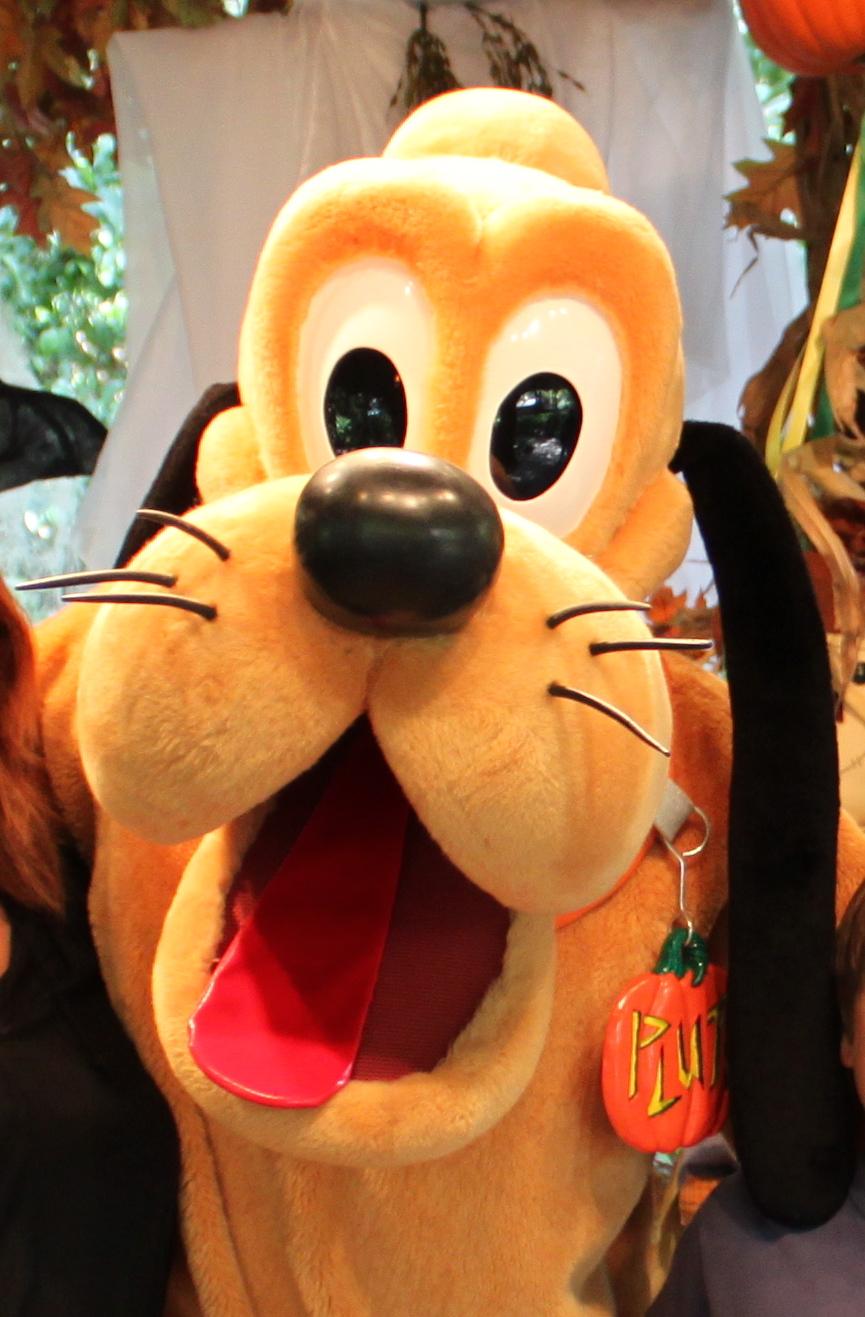 Pumpkin Tag Pluto