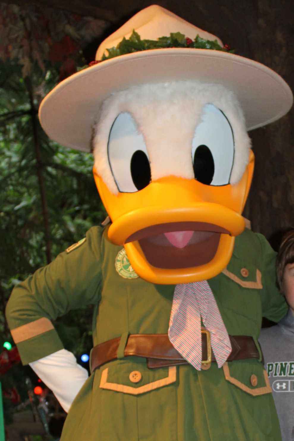 Old Donald