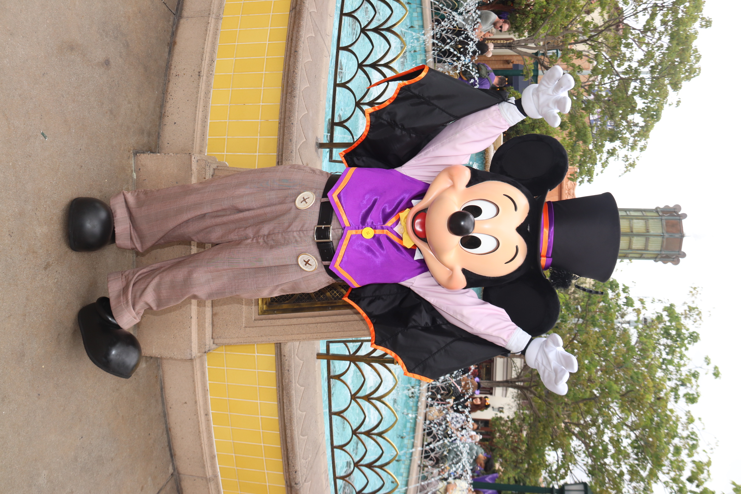 NewMickey Mouse