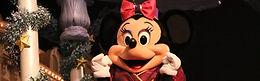 Disney Magic on Parade (2014)