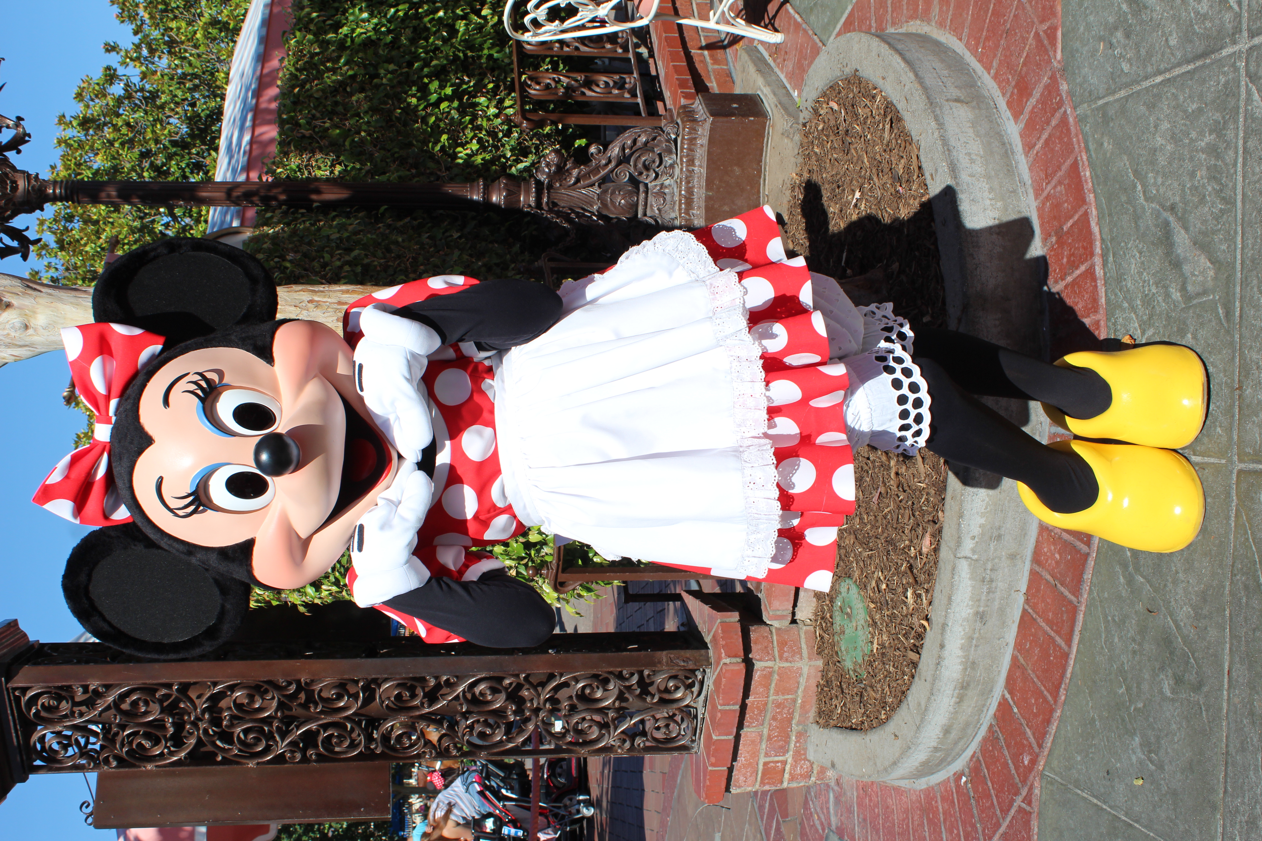 Chef Minnie Mouse