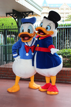 Donald Duck and Scrooge McDuck