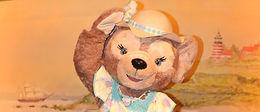 Duffy's Sunny Fun