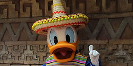 WDW Mexican