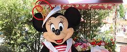 Walt Disney Studios Etc