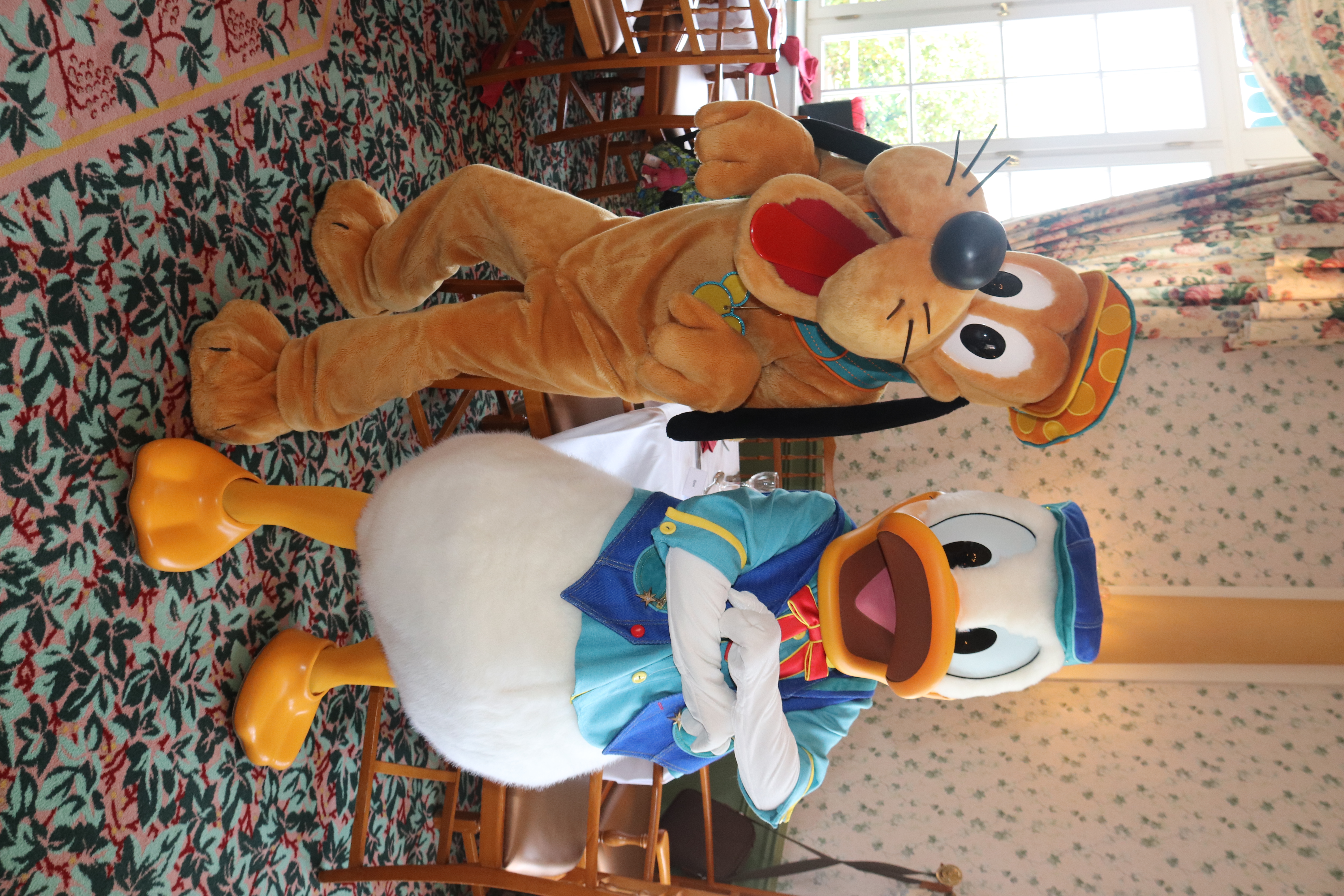 Pluto and Donald