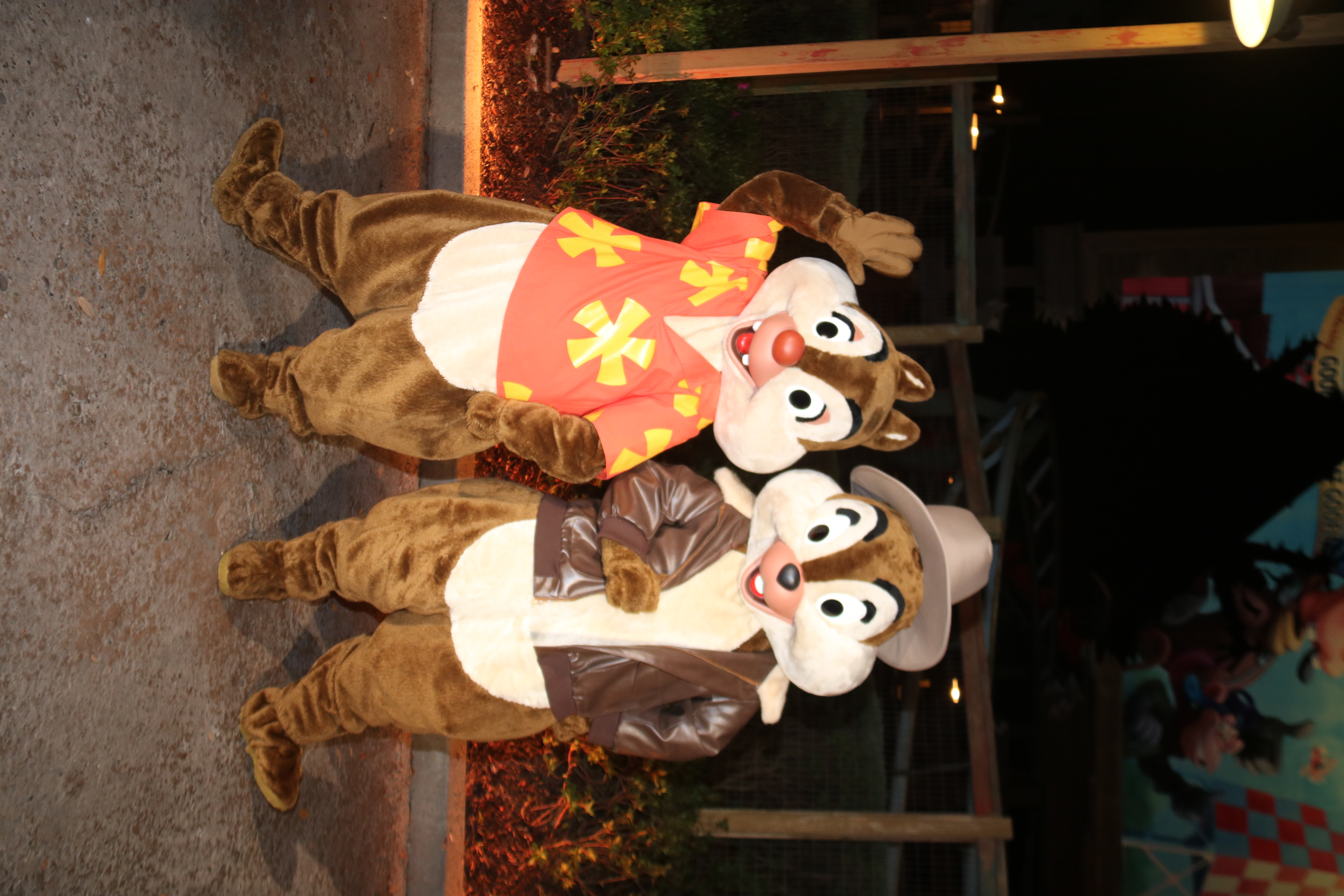 Rescue Rangers Chip 'n' Dale