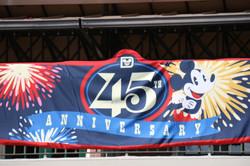 Magic Kingdom's 45th Anniversary