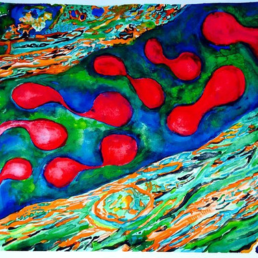 Red blood cells 2014