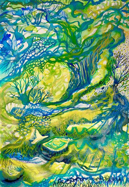 Forest Floor 2014