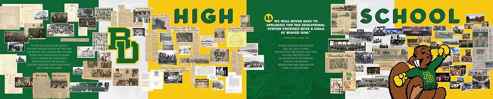 BDHS-History-Wall_552x112_web.jpg