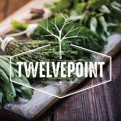 _TwelvePoint Portfolio Icon-01