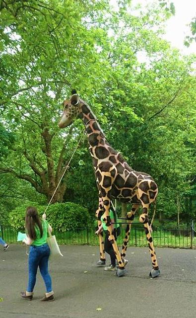 Giraffe puppet made by Leah Kurzepa.