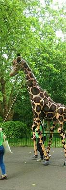 giraffe-puppet