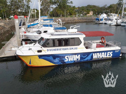 COMMERCIAL WHALE CHARTER