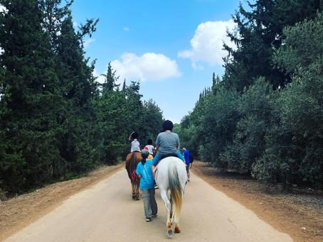 סדנת בישול דרוזי, רכיבה על סוסים, פארק הירדן, קיאקים ומסעדה קסומה לצד עץ תות ומעיין