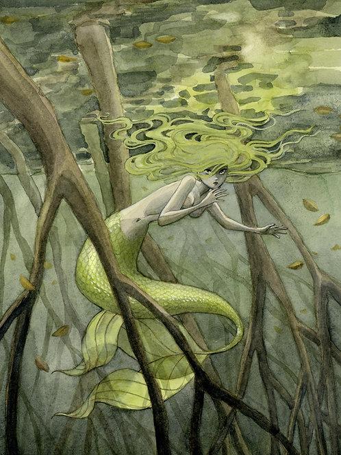 Mangrove Mermaid Print - 11 x 14