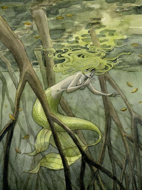 Mangrove Mermaid Print - 8 x 10