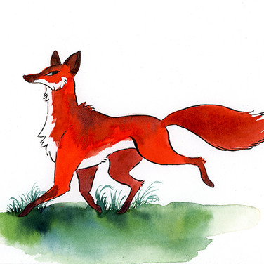 Fox 3 (walking)