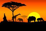 STEEL Advisory Partners - Views on Africa