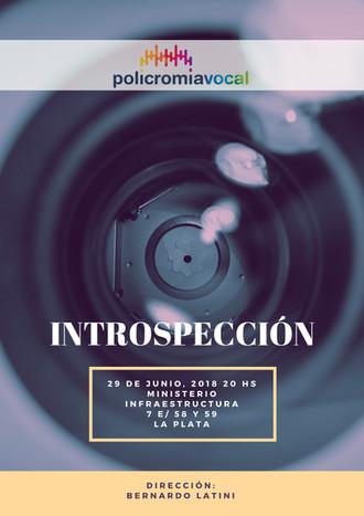 Policromía Vocal - Introspección
