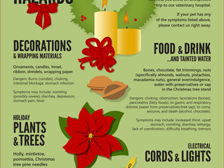 Keep those Furry friends Safe during the Holidays!