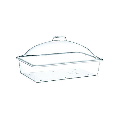 Buffet Tray, with Lid, Rectangle, Polystyrene, 40x25x17cm