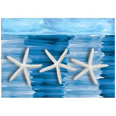 Placemats, Starfish Design, 500pcs, 30x40cm