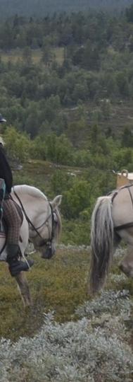 In Langedrag Naturpark, ruta con fiordos