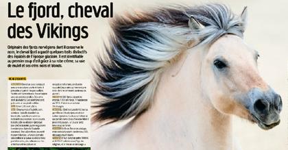 caballo vikingo.png