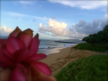 Kauai Flower Meditation