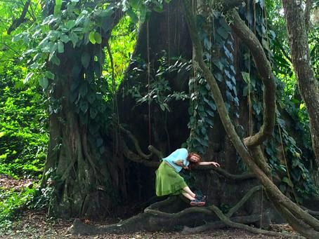 Happy Earth Day! A Gaian Read…