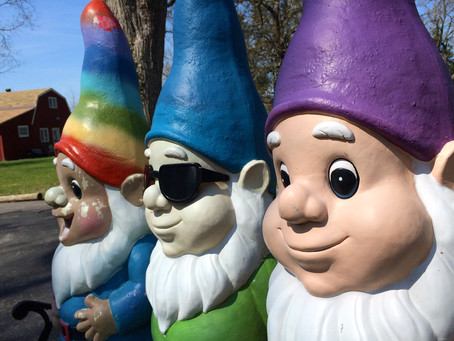 Fae on Friday – Gnomes and Friendships!