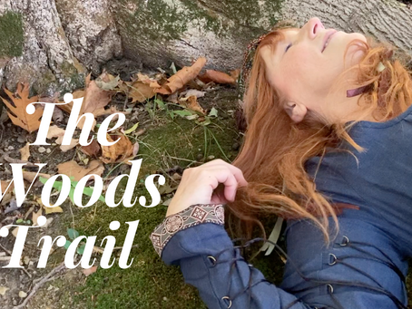 The Woods Trail – Walk In Wonderment With Me